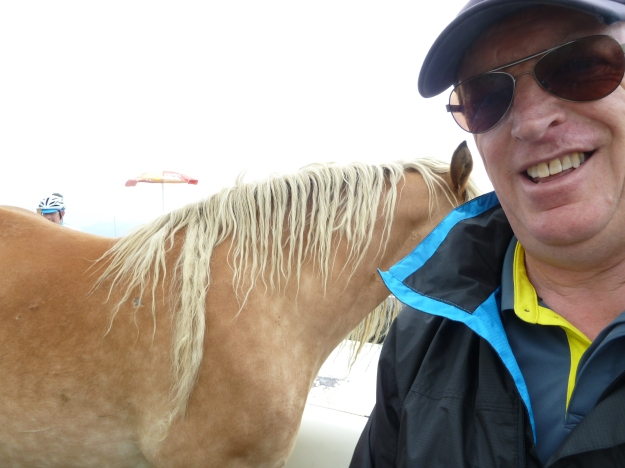 Selfie of me and attacking horse.   I`m the one on the right!